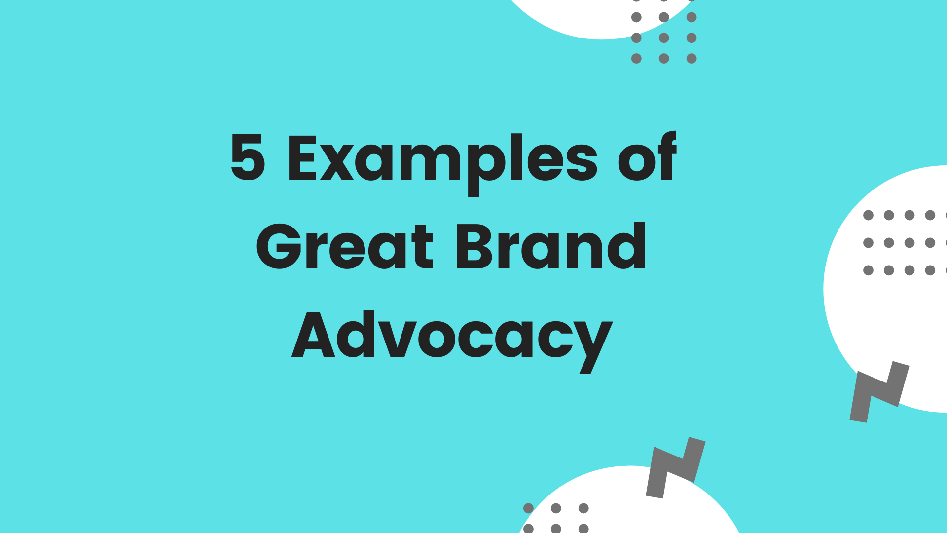 5 Excellent Examples of Brand Advocacy Programs in 2020